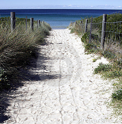 Free Sandy Path To The Beach Royalty Free Stock Image - 778906