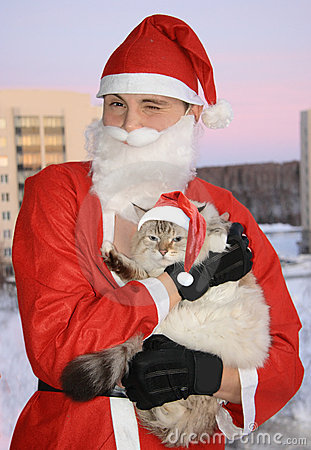 Santa with cat, christmas