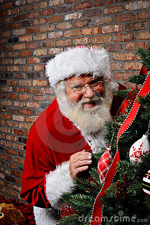 Santa Claus Smiling by the Christmas Tree
