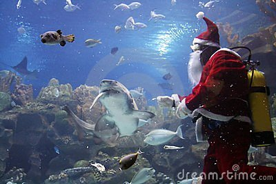 Santa Clause Feeding Shark