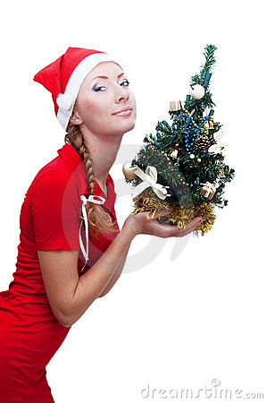 Santa helper with Christmas tree