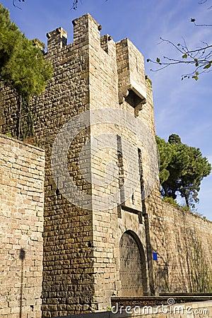 Santa Madrona Door. Barcelona