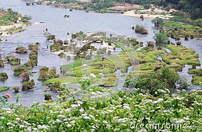 Sanya village landscape