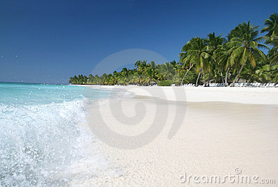 Saona: Sand Beach, Caribbean Ocean and Palm Trees