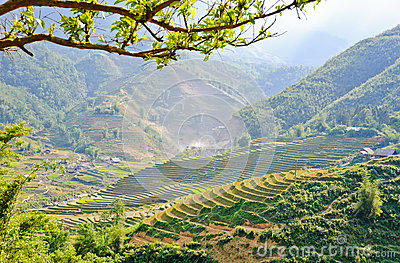 Sapa moutain view