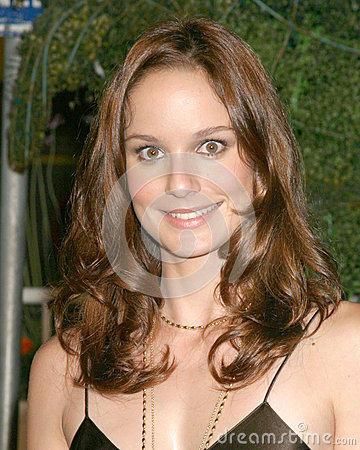 Sarah Wasyne Callies FOX TCA Tour Party Santa Monica Pier Santa Monica, CA July 29, 2005 Editorial Stock Image