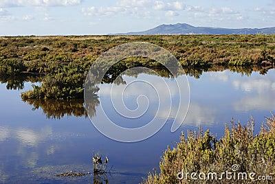Sardinia. protected area
