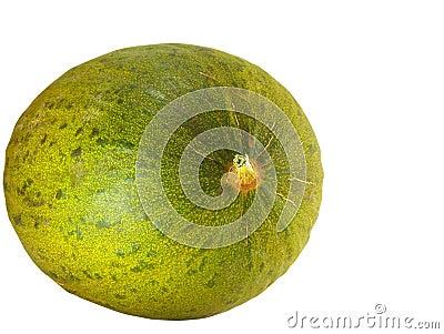 Sardinian Green Melon