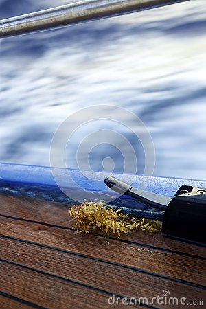 Sargassum on boat deck