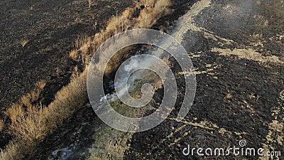 Satellietbeeld van gebrand gebied, het branden van droog gras Vliegrug en schuine standtechniek berokken het milieu stock videobeelden