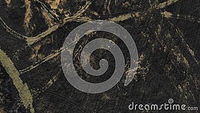 Satellietbeeld van gebrand gebied Hoogste mening met klim omhoog en pantechniek stock footage