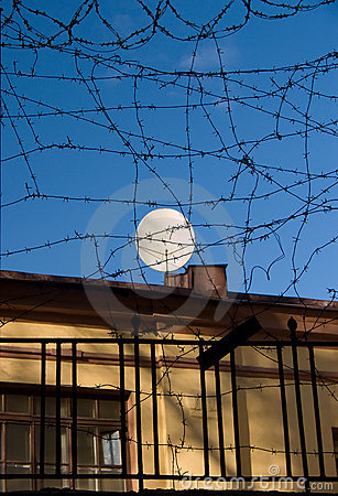 Satellite Over Barbed Wire