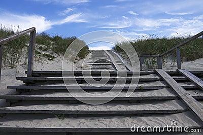 Satirs in dunes