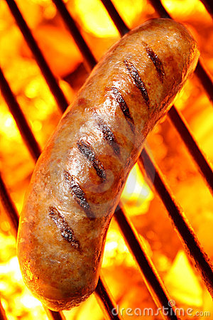 Free Sausage Hot Dog On A Fire Hot Barbecue Grill Stock Image - 5829041