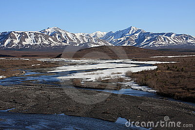 Savage River in Spring, Denali National Park