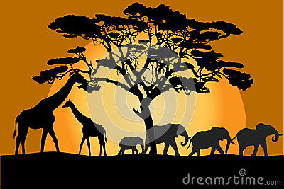 Savannah landscape with animals