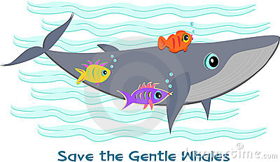 Save the Gentle Whales