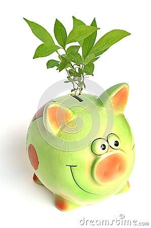 Free Saving Environment Royalty Free Stock Photo - 19551485