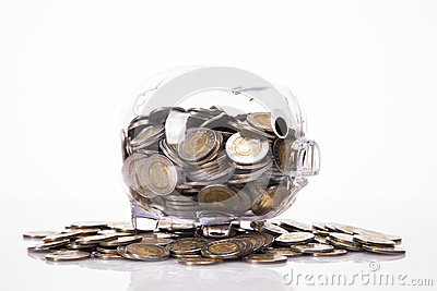 Savings in piggy bank! A lot of money!