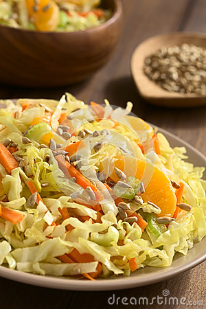 Free Savoy Cabbage, Carrot, Celery And Orange Salad Stock Photography - 62263172