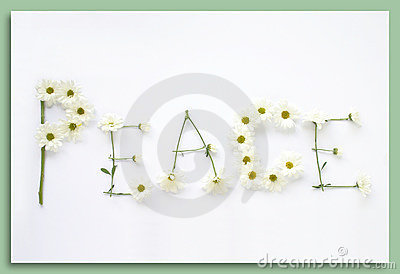 Say It With Flowers:  Peace