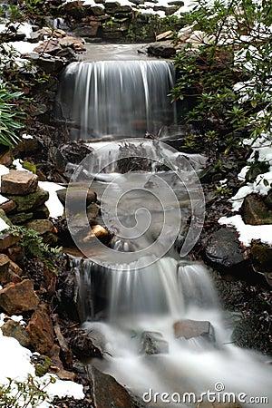 Free SC Botanical Gardens Royalty Free Stock Image - 2247116