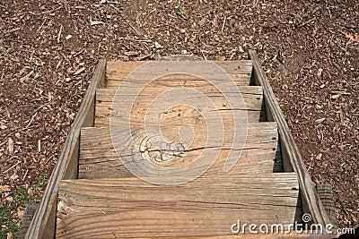 Scale di legno immagini stock immagine 25751134 for Furniture w waters ave tampa