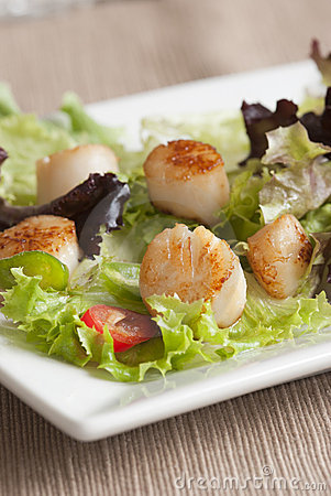 Scallop and leaf salad