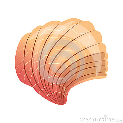 Free Scallop Seashell, An Empty Shell Of A Sea Mollusk. Colorful Cartoon Illustration Stock Photos - 90565603