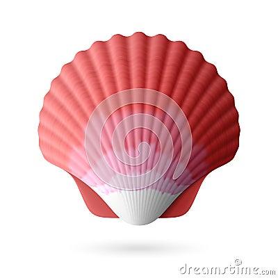 Scallop seashell