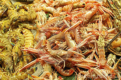 Scampi on the Market in Barcelona