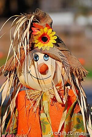 Free Scarecrow Stock Photo - 11755030