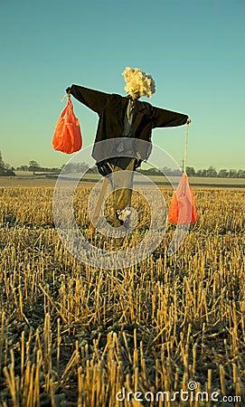 Free Scarecrow Stock Image - 3885391