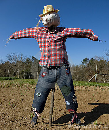 Free Scarecrow Stock Photo - 4342850