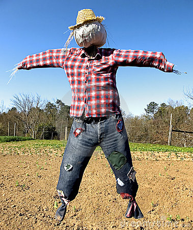 Free Scarecrow Royalty Free Stock Images - 8832019