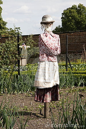 Scarecrow in avegetable garden