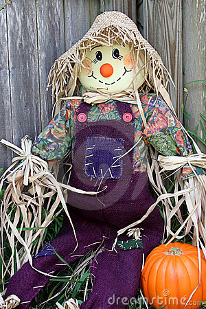 Scarecrow in Garden 1