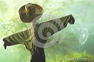 Scarecrow & Spiderweb