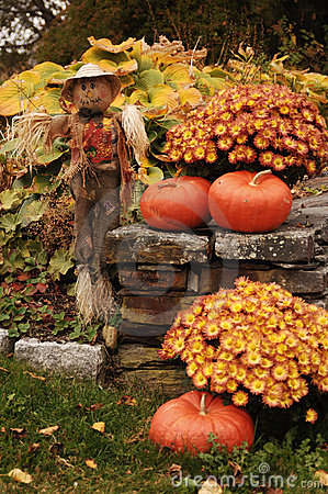 Free Scarecrow With Pumpkins Stock Image - 1385171