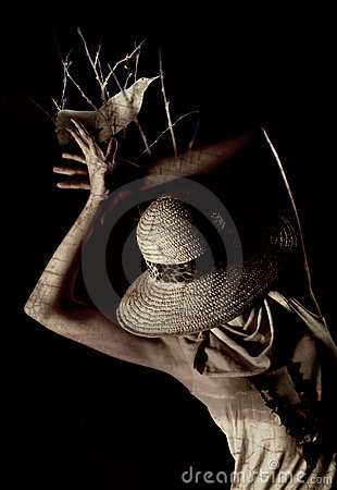 Free Scarecrow Woman Royalty Free Stock Images - 8972699