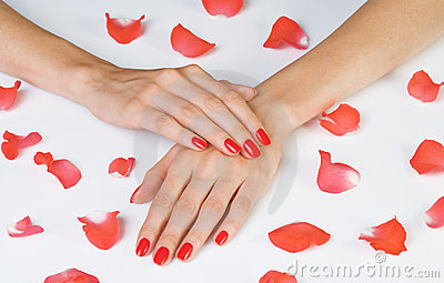 Scarlet manicure and rose petals