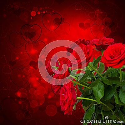 Free Scarlet Roses  On Dark Background Stock Photo - 35477620