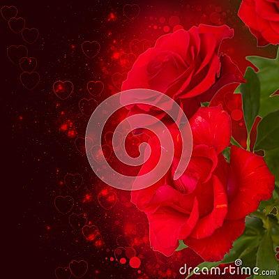 Free Scarlet Roses  On Dark Background Stock Images - 35477844