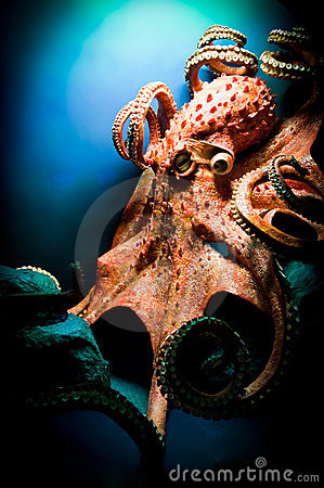 Free Scary Giant Octopus Royalty Free Stock Image - 17558946