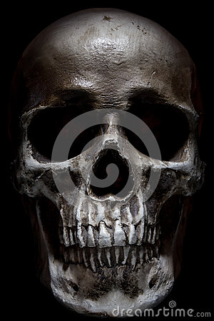 Free Scary Human Skull Isolated On Black Background Stock Photography - 49408772