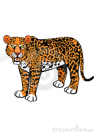 Scary Leopard Roaring Royalty Free Stock Photo - Image ...