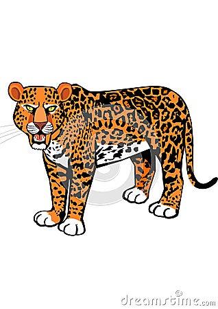 Scary leopard roaring