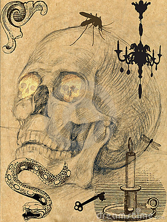 Scary skull picture 4