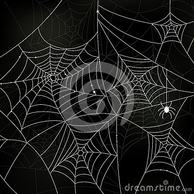 Scary Spider Webs
