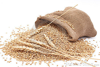 The Scattered Bag With Wheat Royalty Free Stock Images ...